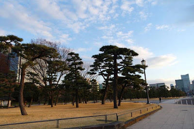 Evening Walk at Imperial Palace Ground Japan