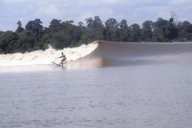 Sungai Kampar, Riau