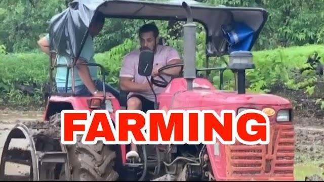 IN VIDEO: सलमान खान ट्रॅक्टर चालविताना दिसला, त्याच्या 'फार्मिंग' सत्राचा आनंद लुटला