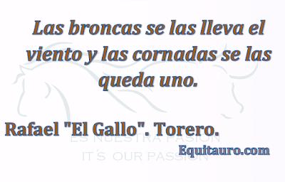 Toros, Tauromaquia, Equitauro.com, Frases, Bullfighting, Toreros, Toros, Maestranza, plaza de toros, cornadas, viento, bullfighter, España, Spain.