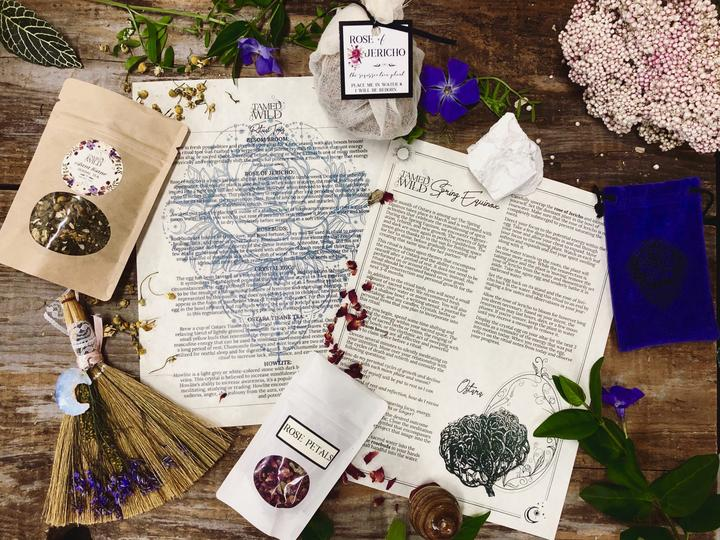 holiday, gift guide, witches, tamed wild, subscription box