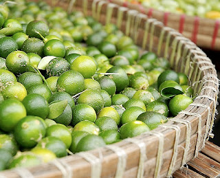 Calamansi before turning to Calamansi Essential Oil