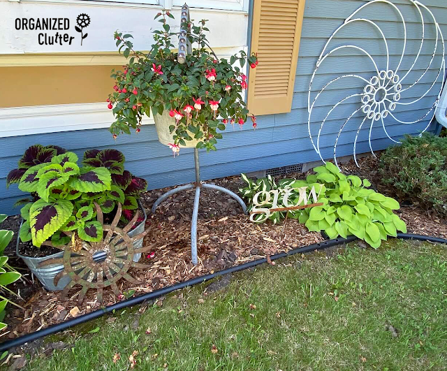 Photo of north side shade plantings