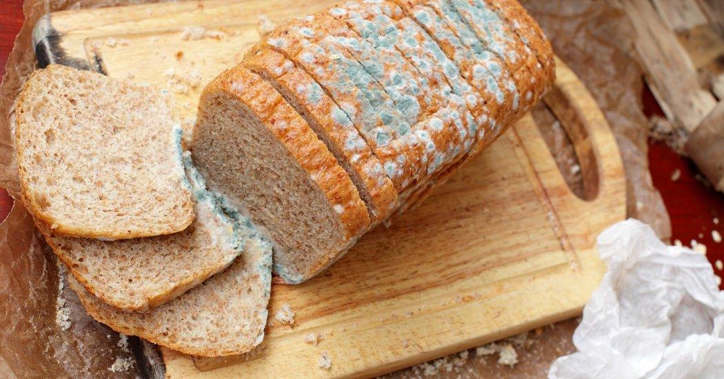 Buang Roti Berjamur Dan Memakan Bagian Yang Tidak Berjamur, Amankah Bagi Kesehatan?