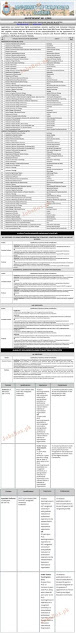 university-of-the-punjab-pu-jobs-2021-advertisement-no-1