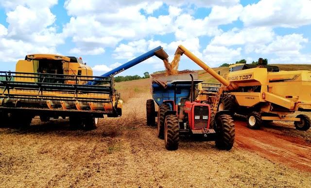 Números recordes na produtividade de soja agrada produtores roncadorenses