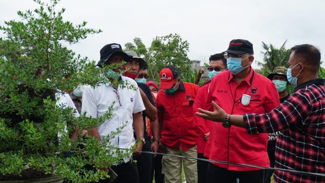 Ajak Masyarakat Peduli Lingkungan, Bupati Nanang Bersama Ketua Komisi IV DPR RI Tanam Mangrove