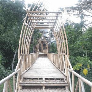 Jembatan Bambu Camera House Borobudur Magelang
