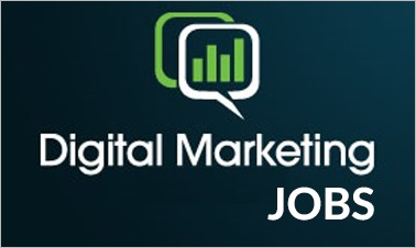 Openings for Digital Marketing Expert Position