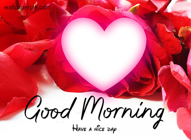good morning images free download for whatsapp hd download in hindi