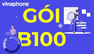 Gói B100 Vinaphone