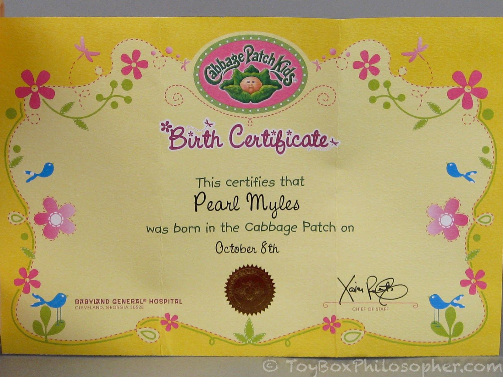 Sunday surprise cabbage patch kids surprise newborn twins for Cabbage patch adoption certificate template
