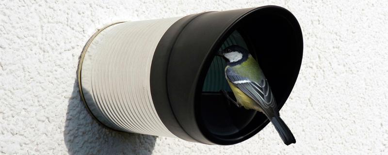 Casitas para pájaros con latas recicladas