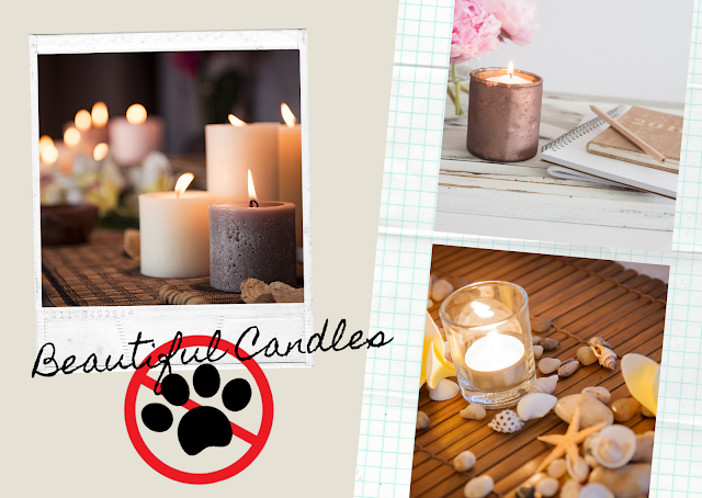 The Dangers of Candles and Spray Air Fresheners to Cats ©BionicBasil® Cat Hazards