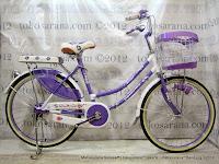 City Bike Element Carmelia 24 Inci