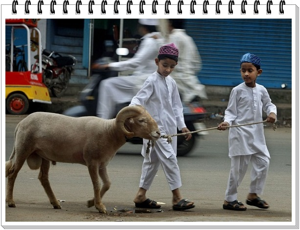 gambar hari raya idul adha 2015 jatuh pada tanggal