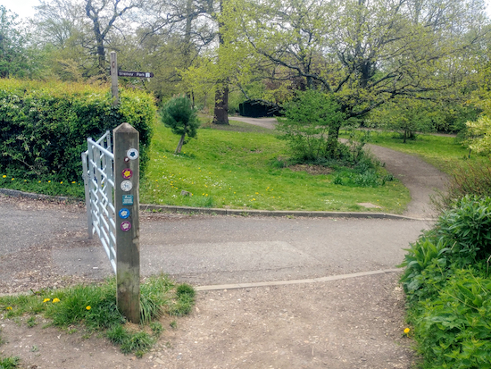 The point where Shenley bridleway 38 meets Porters Park Drive - keep to the right