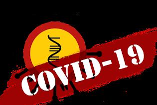 Dampak Covid-19 terhadap UMKM