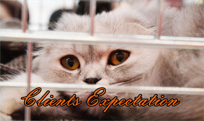 What Clients Expect from Their Veterinarian