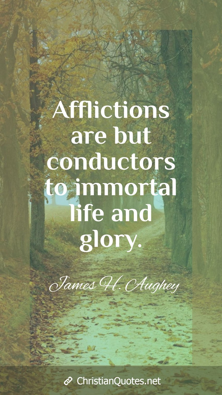 Afflictions are but conductors to immortal life and glory.