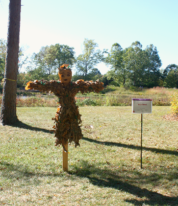 Mini Groot Scarecrow at Morton Arboretum