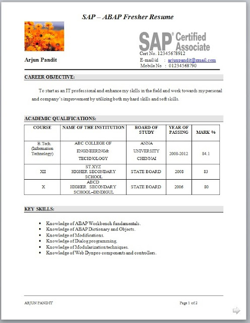 ... Shibna Jafar   Google+   Sap Abap Resume Sap Fi Consultant Resume Format  ...