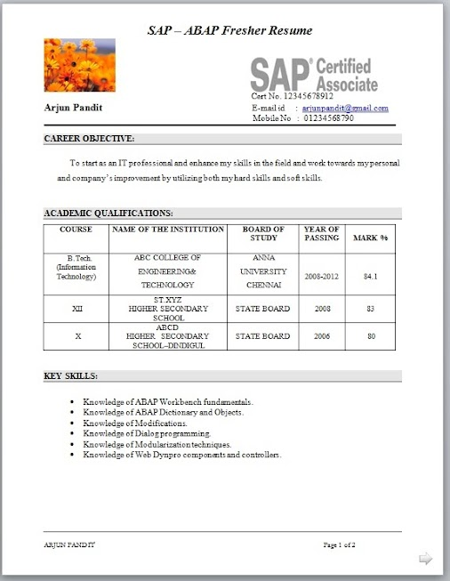 resume for sap abap fresher gallery resume format examples 2018