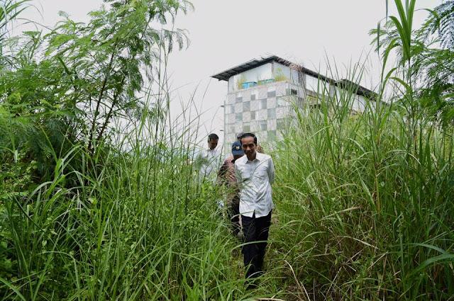 "Kemarahan Jokowi Ibarat ""Berlindung di Ilalang Sebatang"", Berusaha Tutupi Kelemahan tapi Nampak Jua"