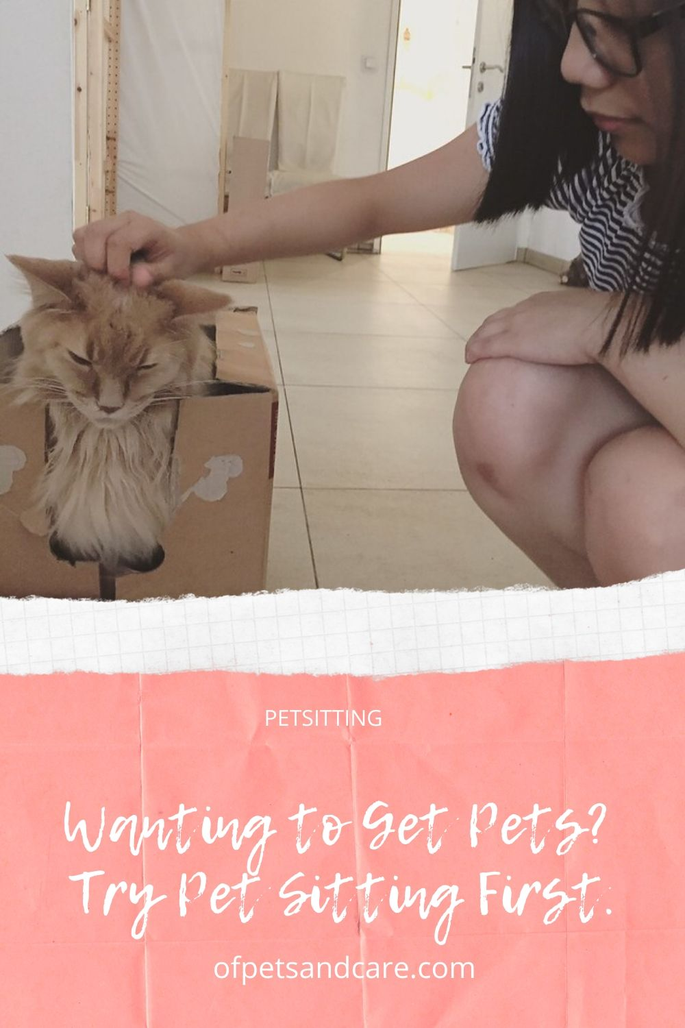 Wanting to Get Pets? Try Pet Sitting First.