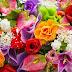 De rosa a orquídea , o signficado das flores para o dia das mães