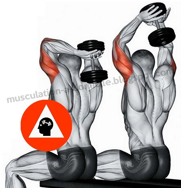 exercice musculation triceps extension nuque deux bras haltère