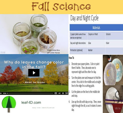 Activities to blend science and fall.