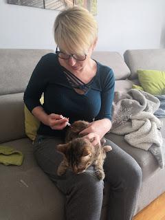 Iniekcja koty