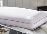 Free Comfort Revolution Aromatherapy Pillow - BzzAgent