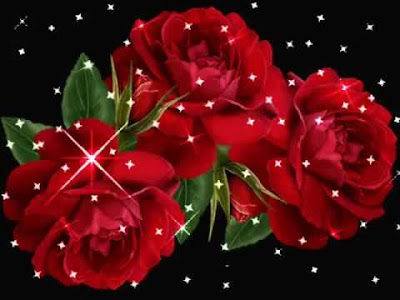 rose day msg