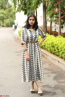 Swathi Reddy Looks super cute at London Babulu theatrical trailer launch ~  Exclusive 070.JPG