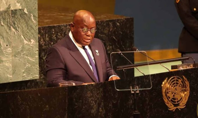 Election 2020: We'll make the world proud – Akufo-Addo to UN