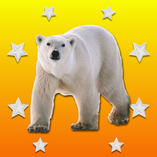 Rescue The Polar Bear Wal…