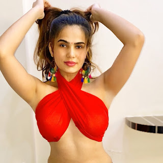 Delhi Escorts Service: A Super-Model Like Delhi Escort, Who Guarantees Complete Discretion