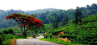 Idukki District, Kerala Recruitment