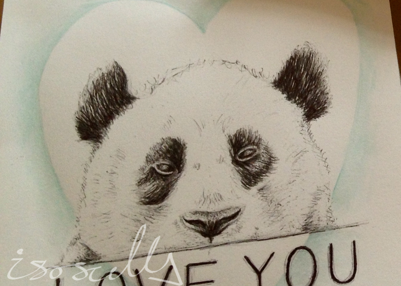 Panda biro sketch with watercolour painting