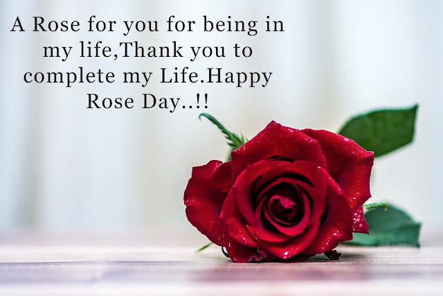 Happy Rose Day  for husband