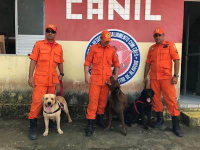 Conheça o papel dos animais no auxílio com a PM e Bombeiros de Alagoas