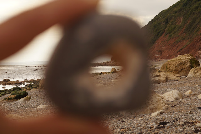 fossil hunting on the Jurassic Coast Branscombe