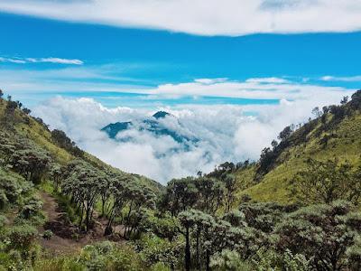Tujuan dan Alasan Naik Gunung