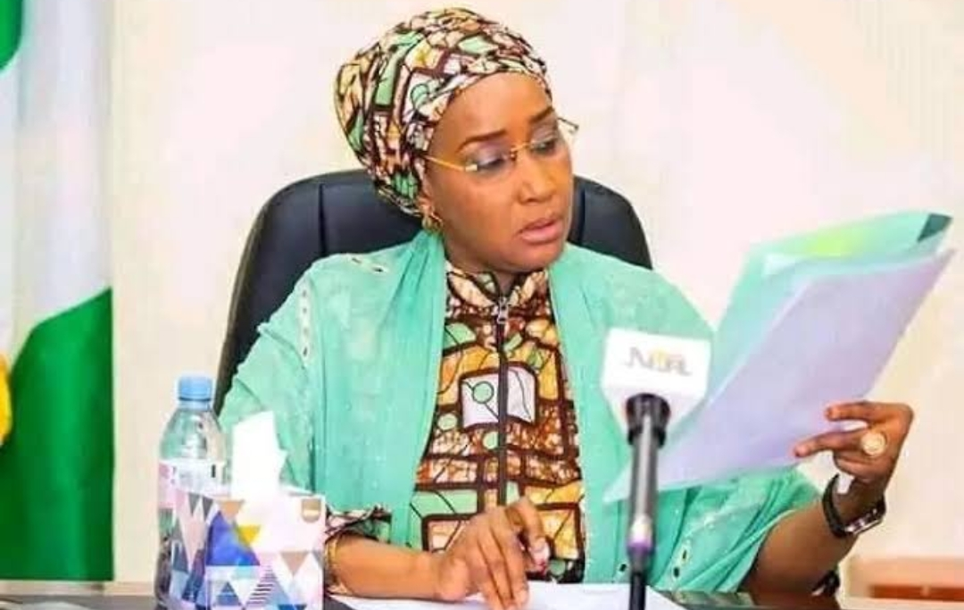 COVID-19: Those who need palliatives the most, are not getting it — Mustapha tells Minister