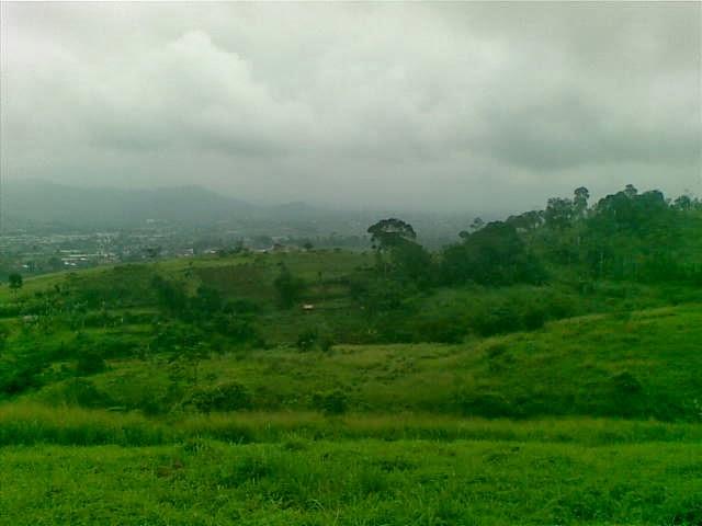 Foto(5199) Jual Tanah Milik | Kebun 23 Ha, Lokasi Puncak jual tanah di puncak