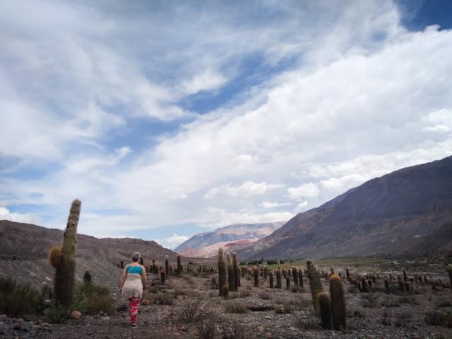 Drumul dintre Salta si San Antonio de los Cobres, Argentina