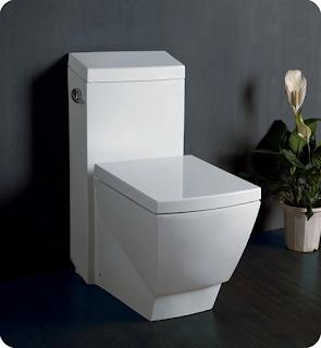 Minimalist square toilet.