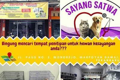 Lowongan Kerja Sayang Satwa Pekanbaru September 2019